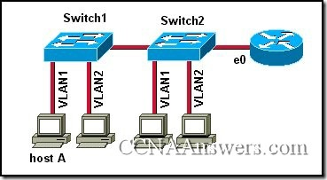 CCNA 3 Module 8 V3.1 Answers