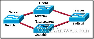 CCNA 3 Module 9 V3.1 Answers (1)