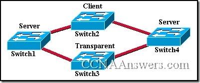 CCNA 3 Module 9 V3.1 Answers (1)