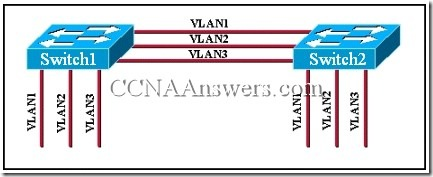 CCNA 3 Module 9 V3.1 Answers (2)