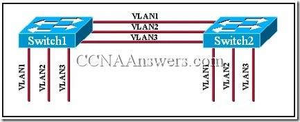 CCNA 3 Module 9 V3.1 Answers (2)