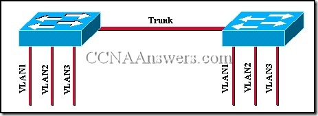 CCNA 3 Module 9 V3.1 Answers (5)