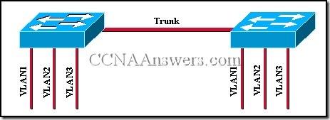 CCNA 3 Module 9 V3.1 Answers (5)