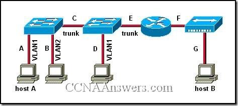 CCNA 3 Module 9 V3.1 Answers (6)
