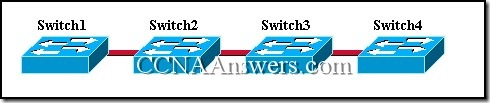 CCNA 3 Module 9 V3.1 Answers (9)