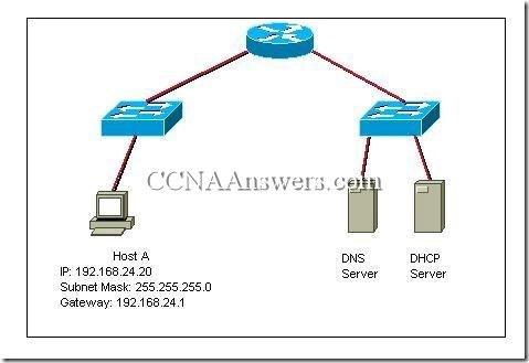 CCNA 4 Module 1 V3.1 Answers (8)