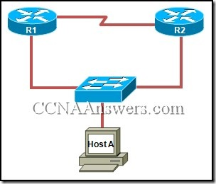 CCNA 4 Module 7 Answers 2010